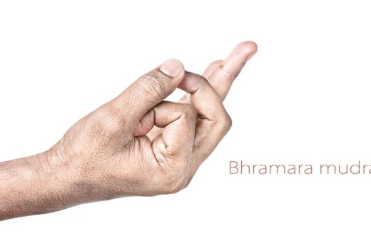 Bhramara-Mudra