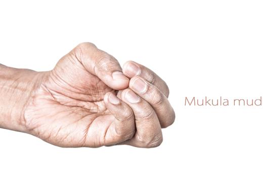 Mukula-Mudra